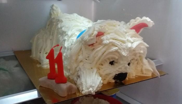 krémmel díszített kutya torta